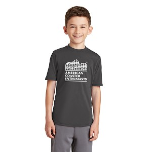 Port & Company Youth Performance Blend Tee with New ACE Logo-Charcoal